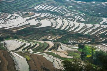 Autocollant pour porte Les champs de riz terraced rice fields in sichuan,china