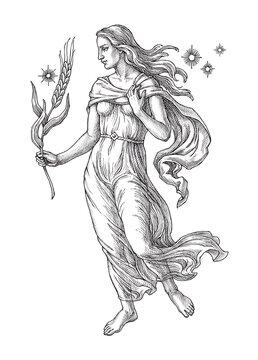 Hand drawn illustration, Virgo, zodiac sign, engraving style.
