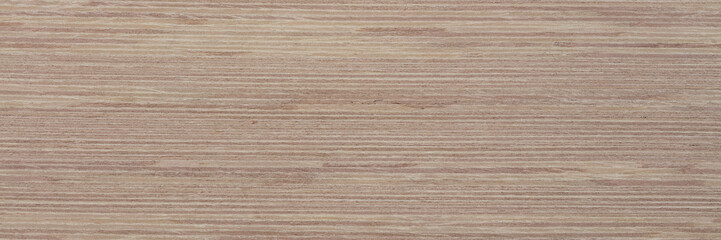 Stylish new light veneer background for your awesome design. Natural wood texture, pattern of a long veneer sheet.