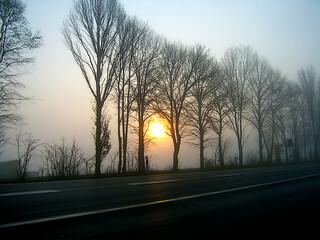 Nebel, ist ein Teil der Atmosphäre, in dem Wassertröpfchen fein verteilt sind.