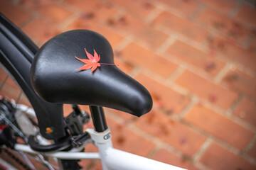 落葉と自転車のサドル 秋のイメージ