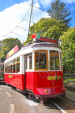 Historic red tram against trees, part of the tramway network since 1873, Lisbon, capital city of Portugal.