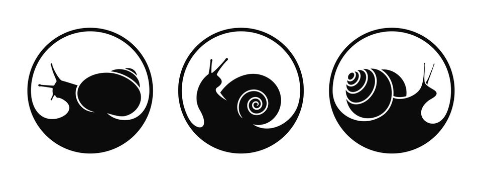 Grape snail logo. Isolated snails on white background