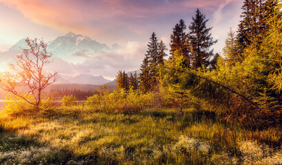 Fotomurales - Awesome alpine Landscape under Sunlit. Scenic image, impressively beautiful Autumn nature at Sunset, with Colorful Sky. Picture of Wild area. Wonderful Picturesque Scene, Alpine valley. Creative image
