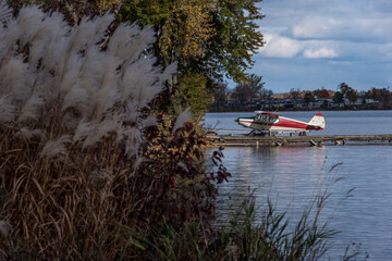single-engine water plane moored at dock