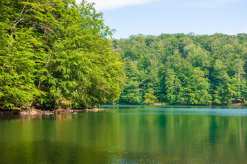 Wall Mural - lake among beech forest of vihorlat mountains. calm nature landscape in summer. sky and trees reflecting in the water. sunny afternoon weather with fluffy clouds