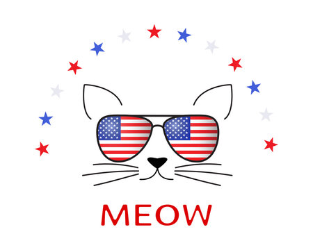 Funny cartoon Cat concept. Pussy and sunglasses with american flag and stars on white.