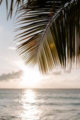 Malerischer Sonnenuntergang auf Bonaire in der Karibik