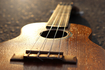 Close-up of a wooden ukulele in the sun. Hobbies: playing a musical instrument. Rest. Wall mural