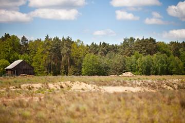 Piaszczysta łąka a w tle fragment wiejskiej zagrody ze stodołą, lasem i niebem wraz z chmurami.