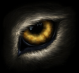 Wolf eye