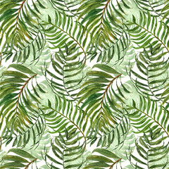 Poster Tropical Leaves Trendy tropical seamless background pattern. Watercolor green tropic forest palm tree leaves on white backdrop. Summer jungle exotic repeat print. Botanical greenery and foliage illustration.