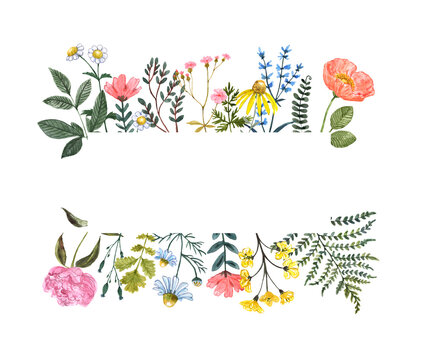 Summer wildflower frame, watercolor illustration. Floral border with blank space for text. Hand drawn pink, yellow, blue meadow flowers and herbs on white background. Botanical banner
