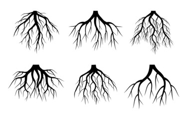 Set of black Tree Roots on white background. Vector Illustration. Plant in Garden.
