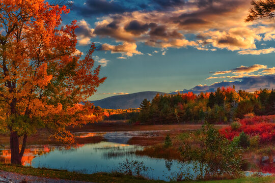 Afternoon in Acadia National park in October, with tress aglow, and beautiful reflections in pond