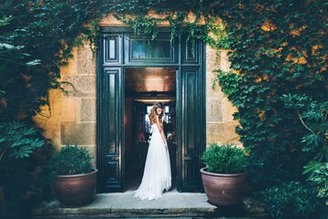 Back view of young sensual bride in white wedding dress standing in doorway of old stone building covered with green ivy and potted plants