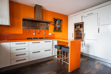 Contemporary kitchen interior with bright orange wall and counter decorated with picture in ethnic style in modern apartment