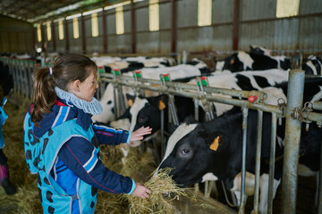 Positive girl feeding cow while visiting farm