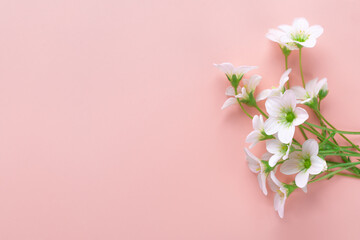 Greeting card with white flowers on pink background. Greeting mockup