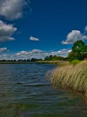Fototapeta Brzeg rzeki obraz
