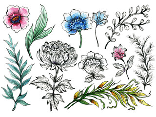 Set of jacobean eastern botanical Abstract flowers and leaves colorful chrysanthemum Bouquet elements arrangement