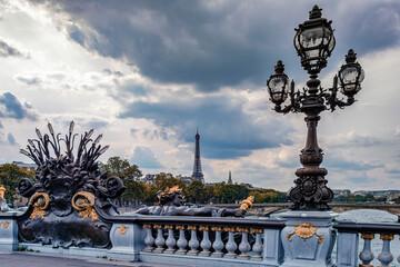 Wall Mural - Alexandre III bridge in Paris