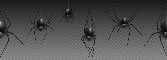 Collection of Spider, cobweb, isolated on black, transparent background. Spiderweb for Halloween design. Spider web elements,spooky, scary, horror halloween decor. Hand drawn silhouette, vector illust