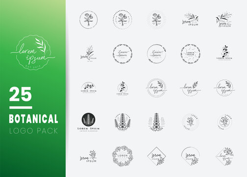 Creative Botanical Logo templates. Modern logo design with leaves, branch and wreath. Can be used for health care, florist, photography, wedding, flower shop, cosmetics, spa and wellness, beauty