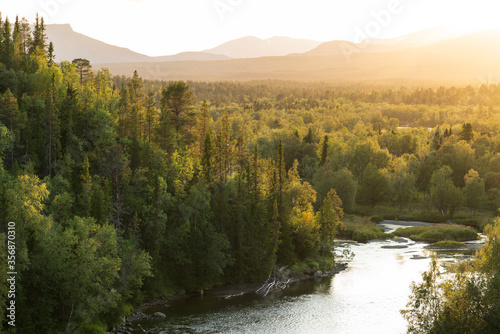 Fotomurales The sun setting over a river in a  green, mountain wilderness. Jamtland, Sweden.
