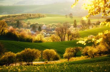 壁紙(ウォールミューラル) - Majestic rural landscape with an old mill. Beautiful sunlight on the wavy fields Kunkovice village.