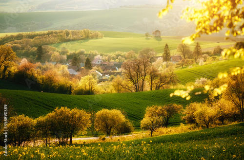 Wall mural Majestic rural landscape with an old mill. Beautiful sunlight on the wavy fields Kunkovice village.