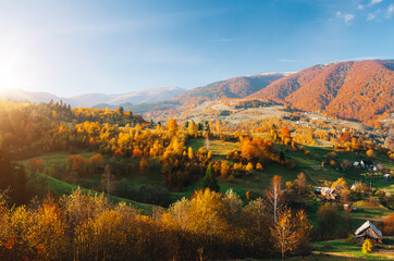 壁紙(ウォールミューラル) - Beautiful view of the autumn valley of the countryside. Location place of Carpathian mountains, Ukraine, Europe.