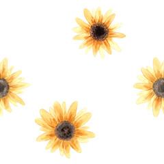 Fototapeta Hand drawn watercolor sunflower flower