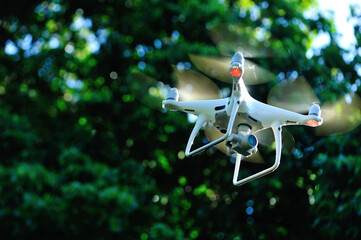 White drone with camera flying taking pictures of lychee fruits  in summer