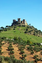 View of the Castle on top of the hill, Almodovar del Rio, near Cordoba, Andalusia, Spain.