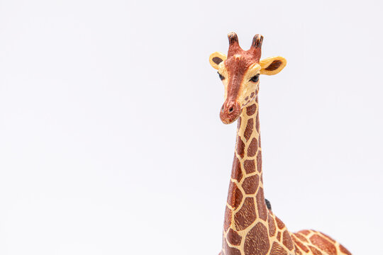 close up of a giraffe from a plastic toy isolated on a white background