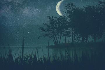 Księżycowa noc