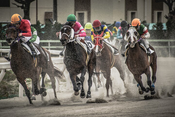 competitive horse racing in heavy sandstorm.