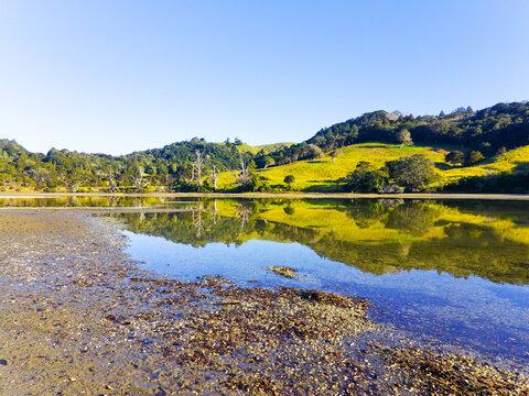 During Low Tide, Landscape View of Puhoi River Bank Wenderholm Auckland New Zealand; Regional Park
