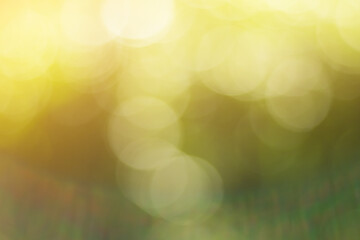 Wall Mural - Natural outdoors bokeh background in gold sunlight with green and yellow tones, Blurred light and  leaf background with bokeh