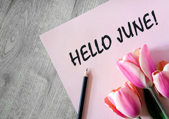 Garden Poster Tulip Hello june text on a pink sheet with a black pencil and a bouquet of tulips