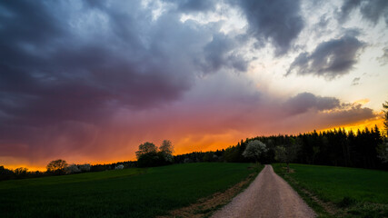 Germany, Red burning sunset sky over endless green trees and meadow of black forest nature landscape