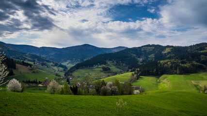 Germany, Paradise like green natural forested mountains of black forest nature landscape trees with moving clouds at small village