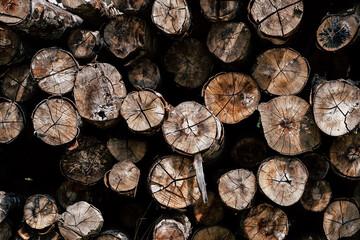 Fototapeten Brennholz-textur Pile de bois de chauffage