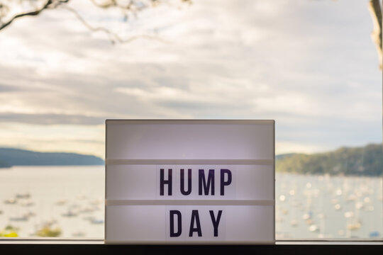 light box with message HUMP DAY