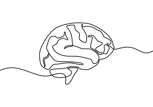 Continuous line art or one line drawing of a human brain. Hand draw object of anatomical human brain icon. Minimalist brain design isolated on white background. Vector illustration