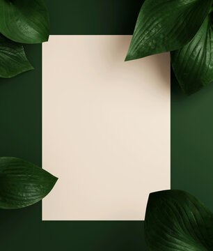 Minimal nature background for summer concept. Beige paper and hosta leaf on green background. 3d render illustration. Object isolate clipping path included.