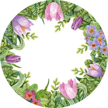 Evening Primrose Flower Oil - Evening Primrose Oil Png Transparent - Free  Transparent PNG Clipart Images Download
