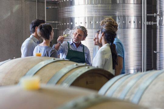 Vintner and winery employees examining wine in cellar