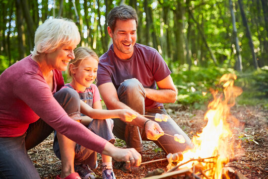 Multi-generation family roasting marshmallows at campfire in forest